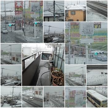 朝から雪14日.jpg