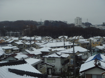残り雪.JPG