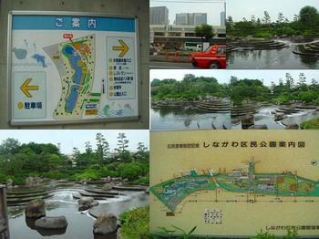 s-しながわ水族館1.jpg